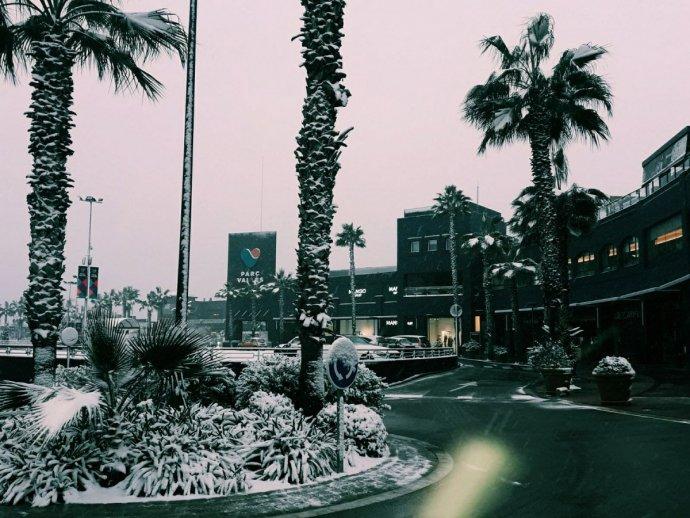 nevada parc valles